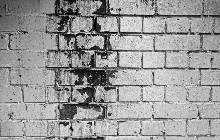 brick wall monochrome mold