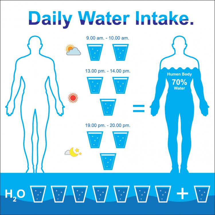daily water intake